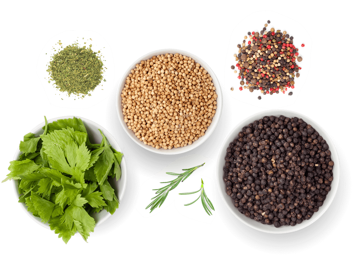assorted ingredients isolated
